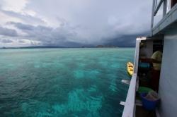 Snorkelling waters