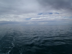 Somewhere 60nm sth...