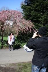 2011-04-02 13-32-49_cherry.JPG